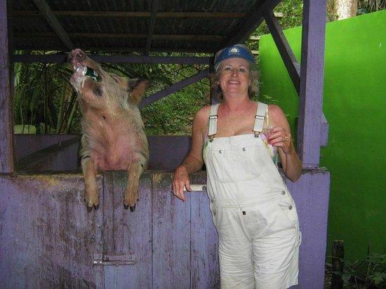 Tan Tan Tours : Hog Wild for Tan Tan!
