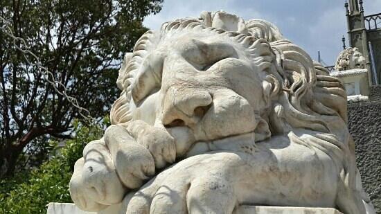 Alupka: Самый красивый лев!