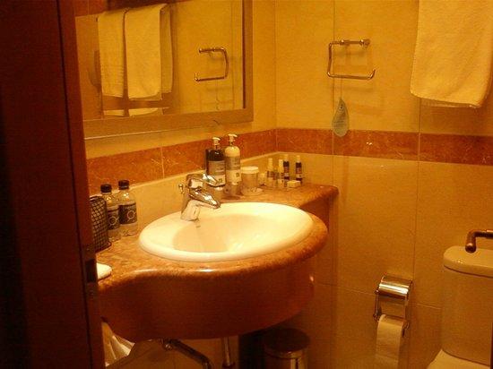 Electra Hotel Athens: Bagno