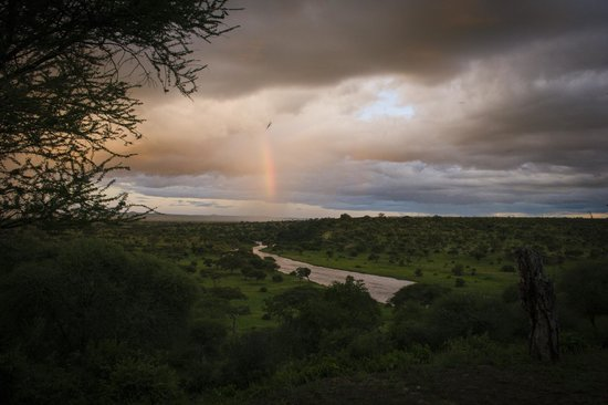 Tarangire Safari Lodge: Rain = Rainbows