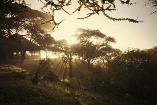 Tarangire Safari Lodge: Misty Morning looking at the Main House