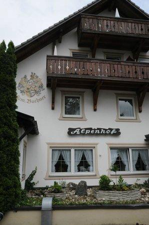 Alpenhof Hotel: Hotel