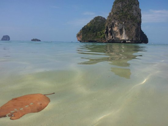 Phra Nang Beach: Lovely Water