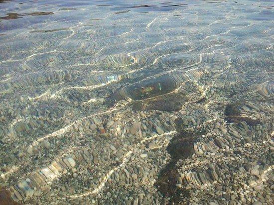 Scrajo Mare: pesciolino nero