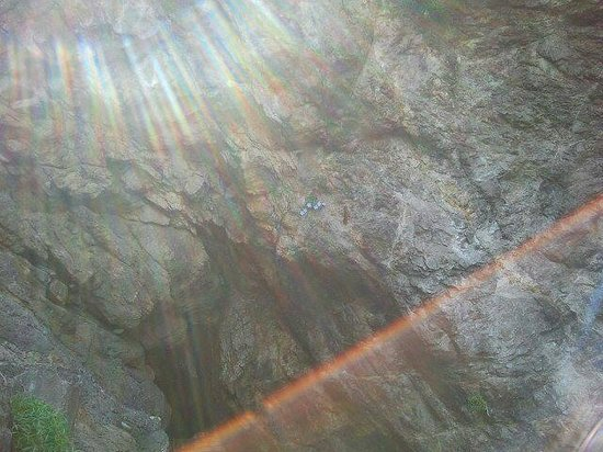 Scrajo Mare: Fiori nella roccia (peccato nn avere zoom)