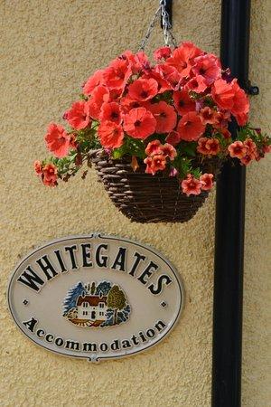 Whitegates Guest House: Insegna