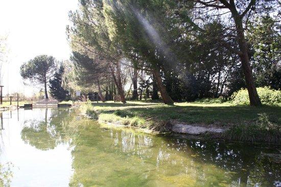 La Pisciculture du Pont de Caylus: riviere