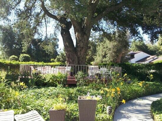 Riviera Oaks Resorts: eating area at pool