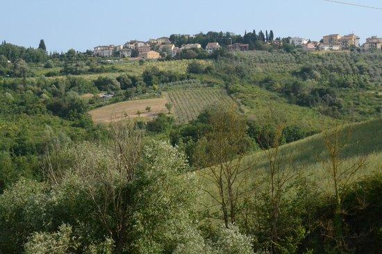Le Mandrie di Ripalta: View from Le Mandrie