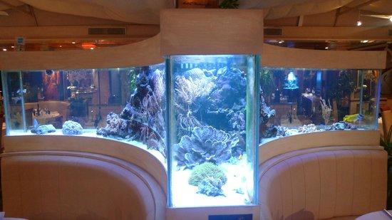 Le paradis marin st laurent du var restaurant reviews - Restaurant indien port saint laurent du var ...