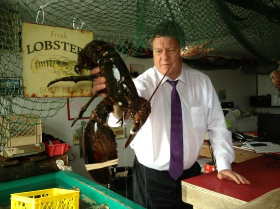 Halifax Titanic Historical Tours: Large lobster at Fisherman's Cove