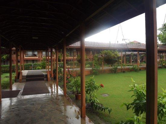The International Centre Goa: Lawn