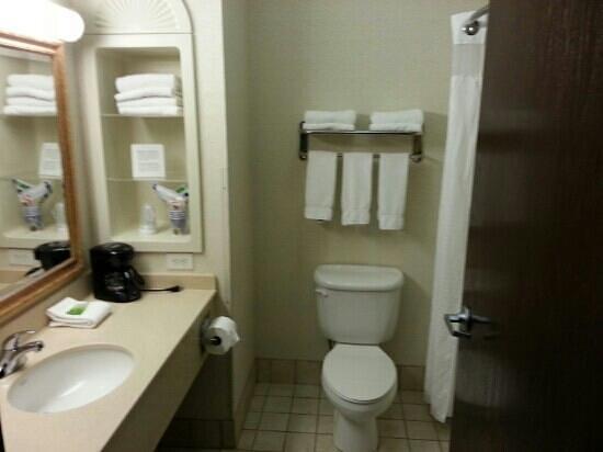 Holiday Inn Express Hotel & Suites - Nacogdoches: bathroom