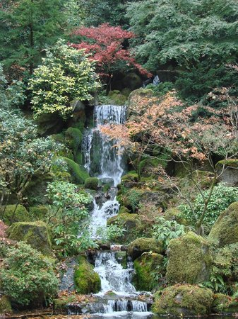 Reflecting Pool Picture Of Portland Japanese Garden Portland Tripadvisor