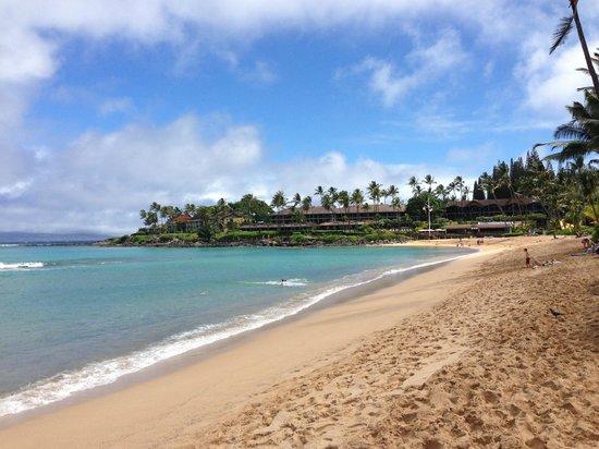 Napili Beach Lahaina Maui Hawaii
