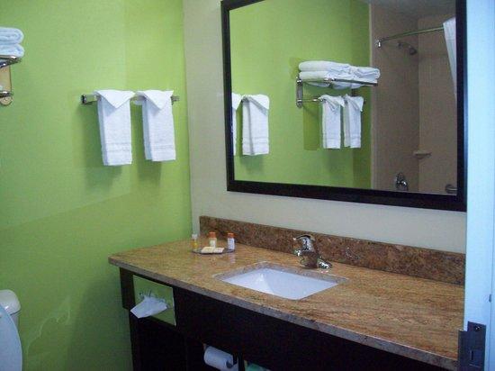 Days Inn & Suites Glenmont/albany : Bathroom