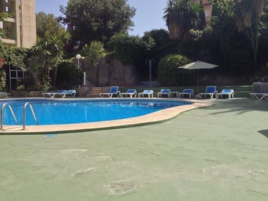 Add a caption picture of apartamentos el faro benidorm tripadvisor - Apartamentos en el algarve baratos ...