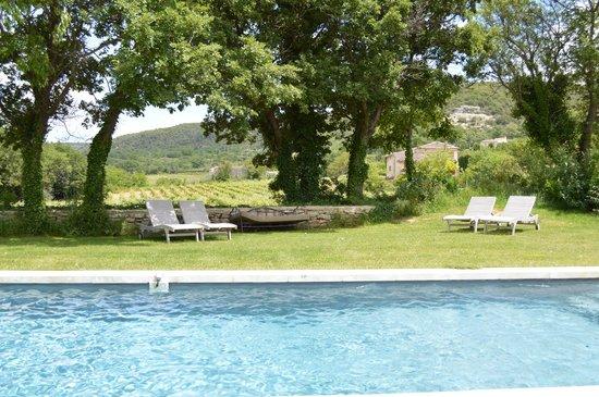 Une Sieste en Luberon : Pool looking towards neighbouring vineyard
