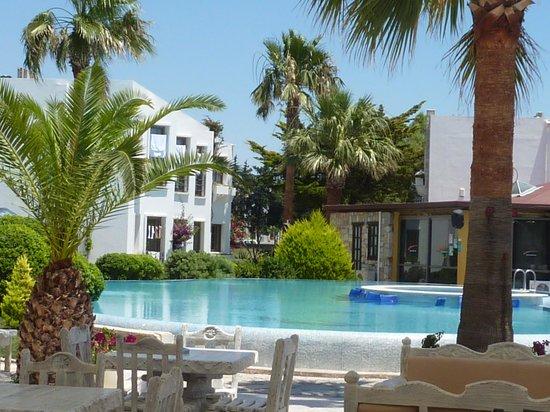 Onderhan Beach Club: piscine