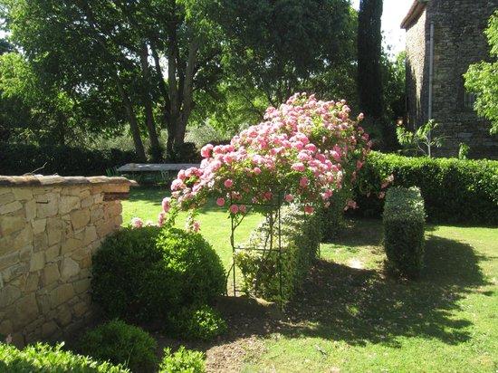 Mas d'Oleandre - Maison d'Hotes : Prachtige tuin (rozen)