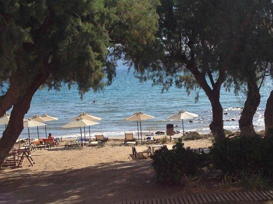 Aphrodite Beach Hotel: LA SPIAGGIA