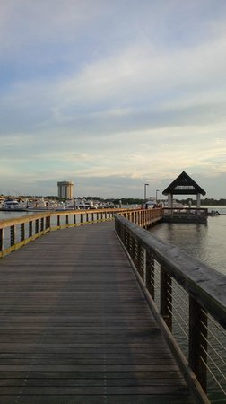 Charleston Marriott: pier to our boat (the marina)