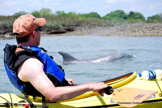 Charleston Outdoor Adventures: The Alloway Family enjoying dolphins up close