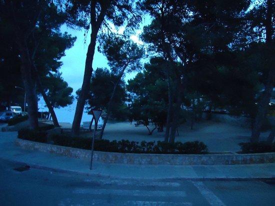 Ona Surfing Playa: Little beach at night