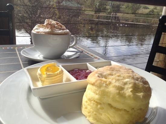 Jandaya Cafe: coffee & scones with jam & cream overlooking the beautiful dam at birds of Eden! what a treat!