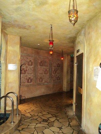 Thermal Hotel Visegrad: tepidarium