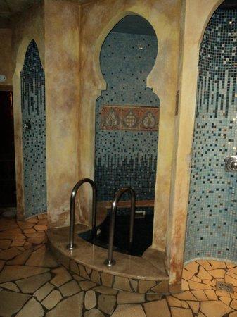 Thermal Hotel Visegrad: sauna douche et bain d'eau glacée