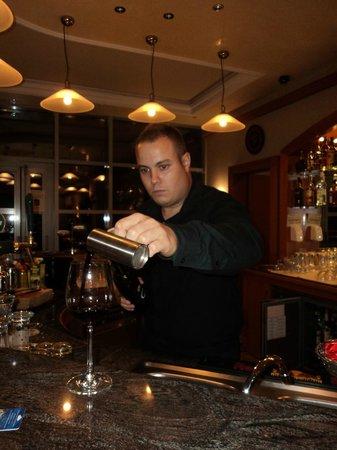 Thermal Hotel Visegrad: le bar avec Joseph