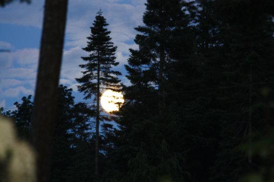 Belle Vue Bed and Breakfast: Super moon June 22, 2013