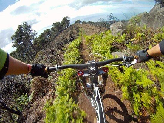 Bikulture: One of Madeira's most successful downhill track