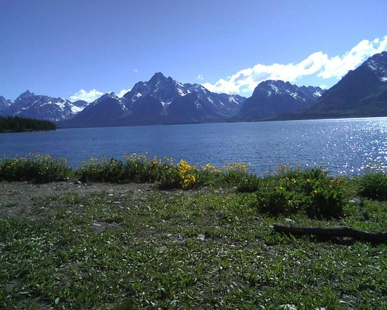 Grizzly Country Wildlife Adventures : Grand Tetons