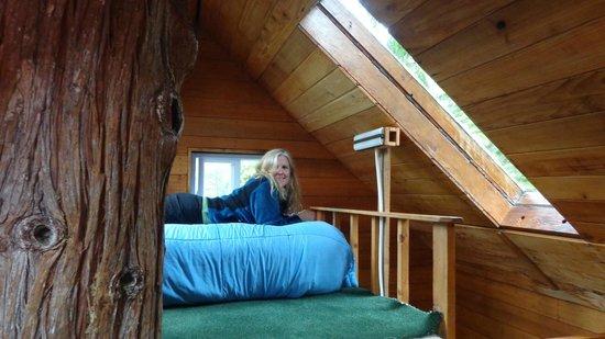 Cedar Creek Treehouse: Sleeping quarters at top of tree house