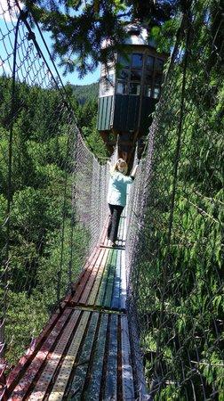 Cedar Creek Treehouse: Rainbow bridge to observation
