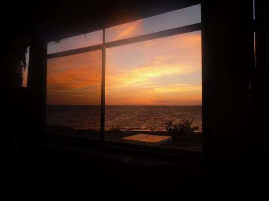 Pachico's Ecotours: Sunrise from the cabin
