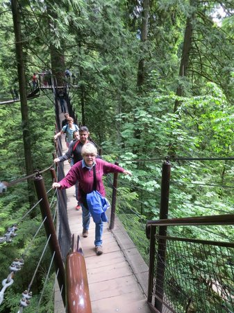 Parque y Puente colgante de Capilano: We are all walking on the tree walk, high up in the trees