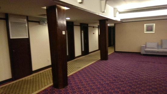 Tianyi Hotel: hallway, only here my wifi worked