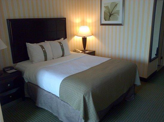 Holiday Inn & Suites - Ambassador Bridge: room photo 2