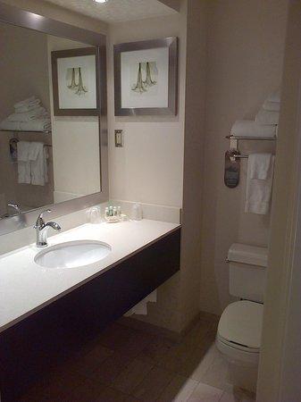 Holiday Inn & Suites - Ambassador Bridge: washroom