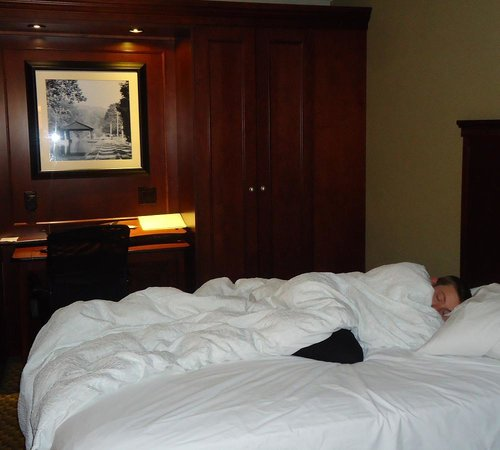 Hampton Inn Beckley: Super-comfy...Difficult to get the kids out of bed!