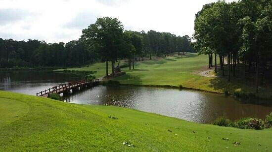 University of Georgia Golf Course: #14 tee box