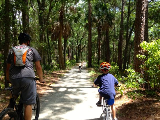 Hunting Island State Park Campground: Maritime Trail to the end of the island.