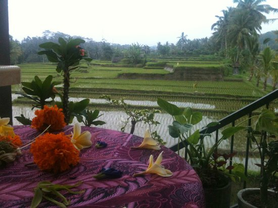 Dukuh Village Homestay: Balcony view from Skyview
