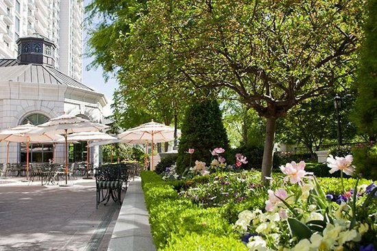 Grand America Hotel : Garden Cafe Patio