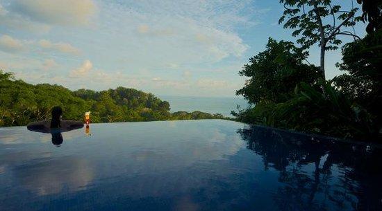 TikiVillas Rainforest Lodge & Spa : Infinity Pool