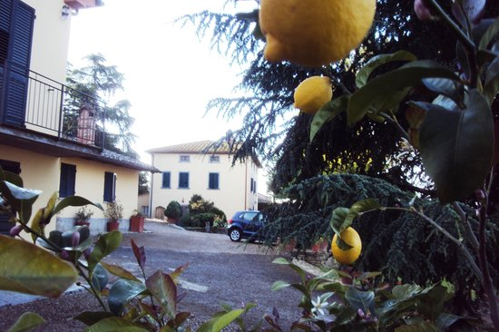 Agriturismo La Maesta: 'La Maestro' farm stay. Perfect layout.