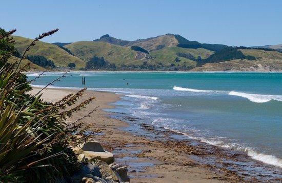 Tararua Tiki Tours Day Tours: Akitio Beach